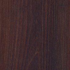 4293 - Robinia della Savana